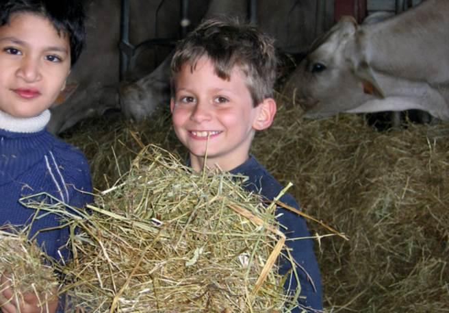 Séjour enfant : Nature et Découvertes