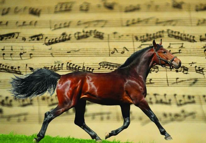 Séjour enfant-ado : Musique et équitation
