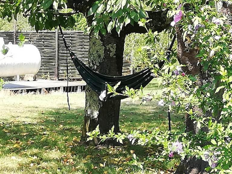 relax sous le cerisier