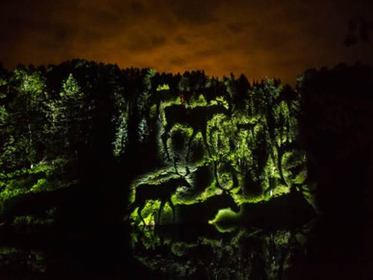 anima-lumina-parcours-nocturne-illumine-au-zoo-sauvage-de-saint-felicien-anima-lumina
