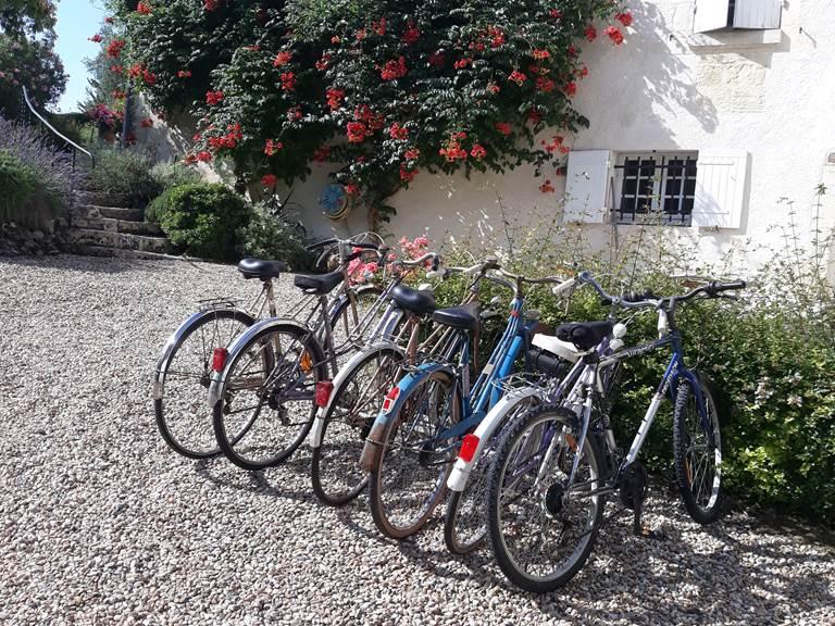 Nos vélos vintage à votre disposition
