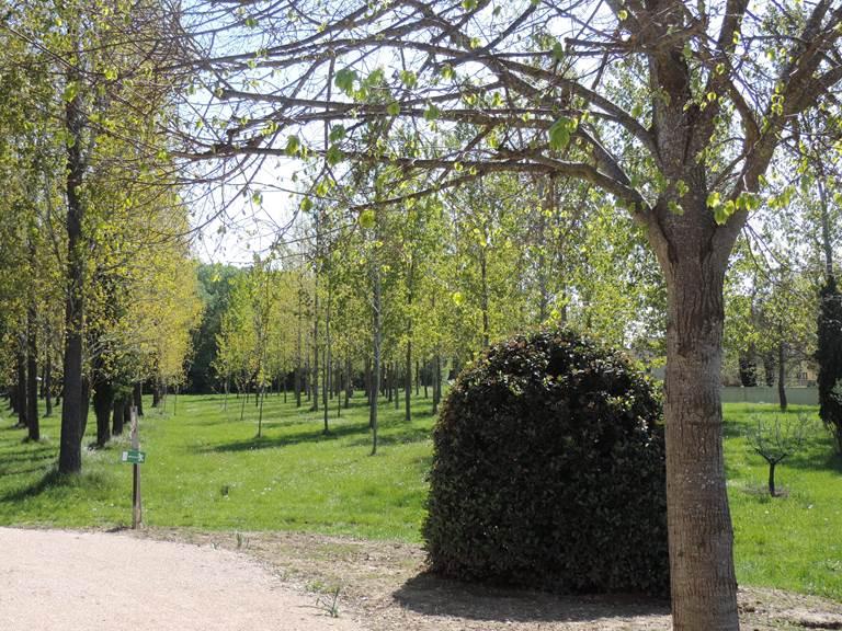 Parc résidence les peupliers loriol du comtat