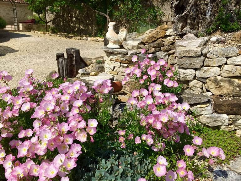 jardin+de+c%c3%b4t%c3%a9+granges+(1)