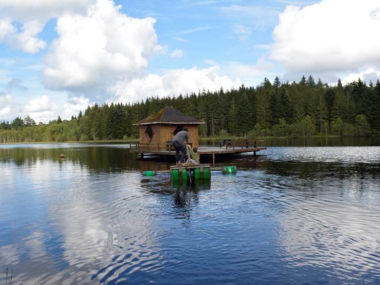 Promenade de l'étang d'Arfeuille, Gîtes Vassivière