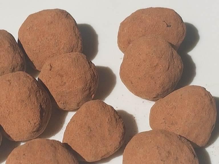 Noisette au chocolat