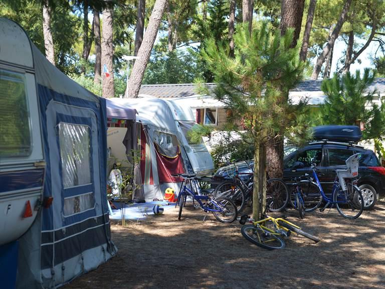 Emplacement Standard - Camping Les Pins - Ile d'Oléron