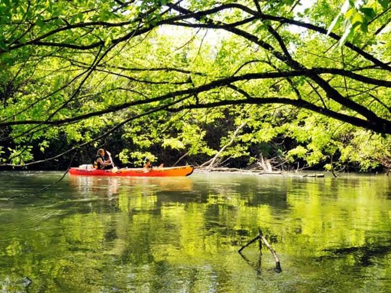 balade-canoe-en-eau-calme-1h45-landes-40-pyrenees-atlantiques