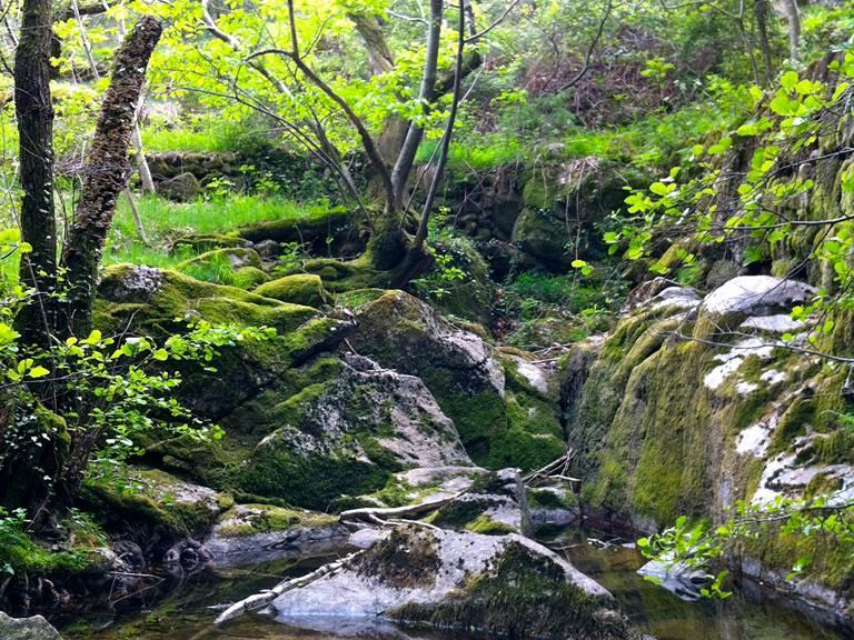 Colognac rivière