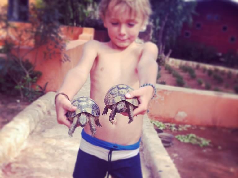 les tortues de Baoussala