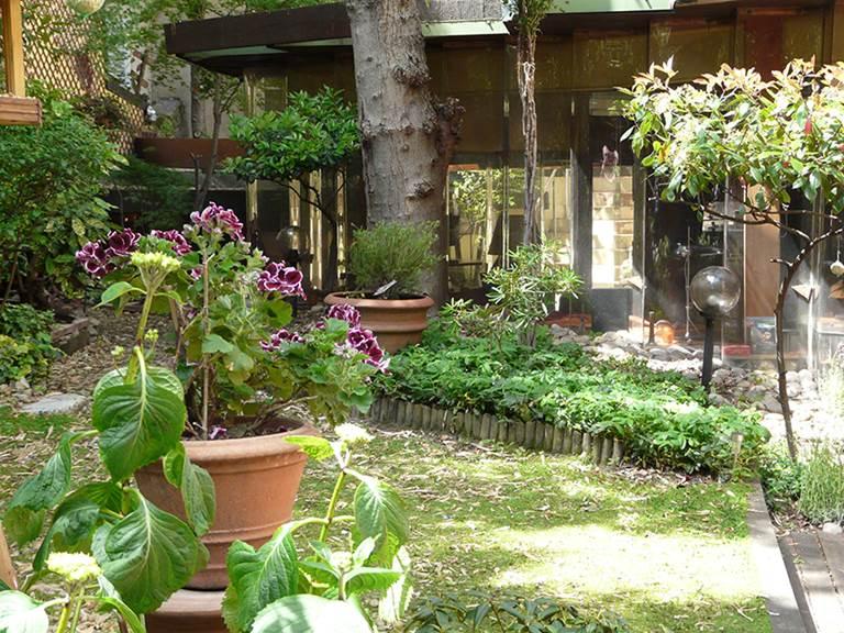 Le jardin avec la maison, vus de la chambre
