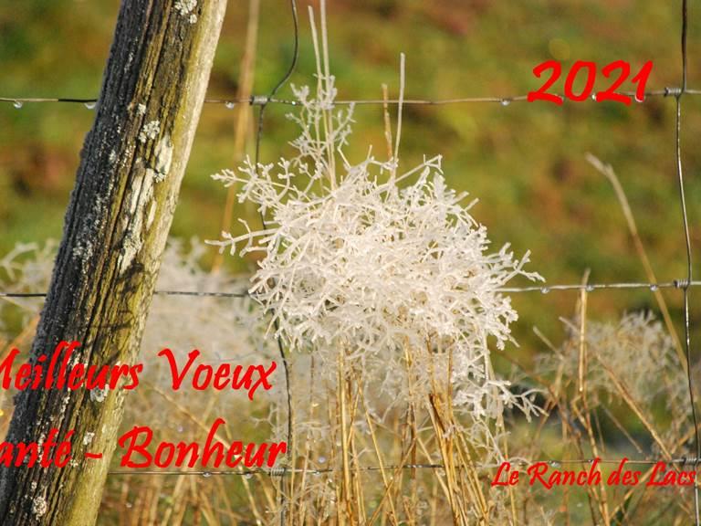 Meilleurs Vœux 2021 Santé - Bonheur du Ranch des Lacs