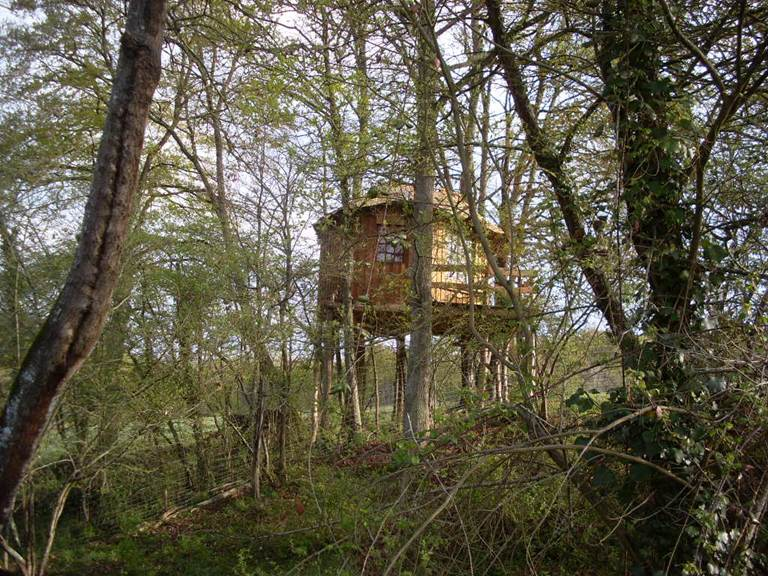 cabane perchée le balcon des oiseaux