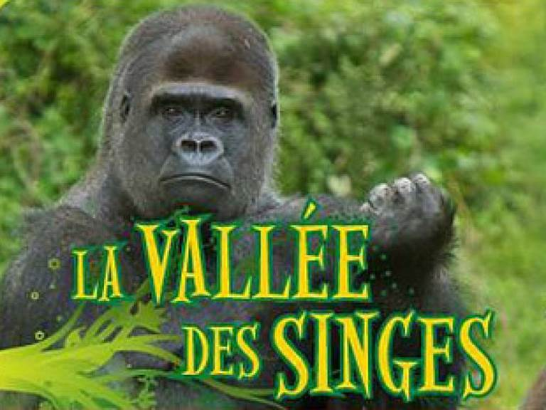 vallee-des-singes-7-page