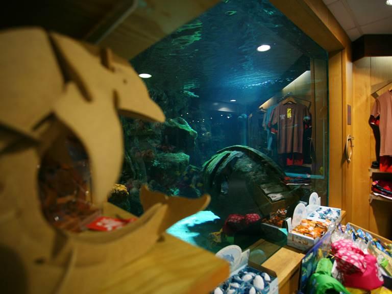 aquarium - 3