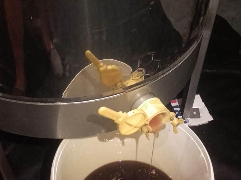 Le miel qui sort de l'extracteur
