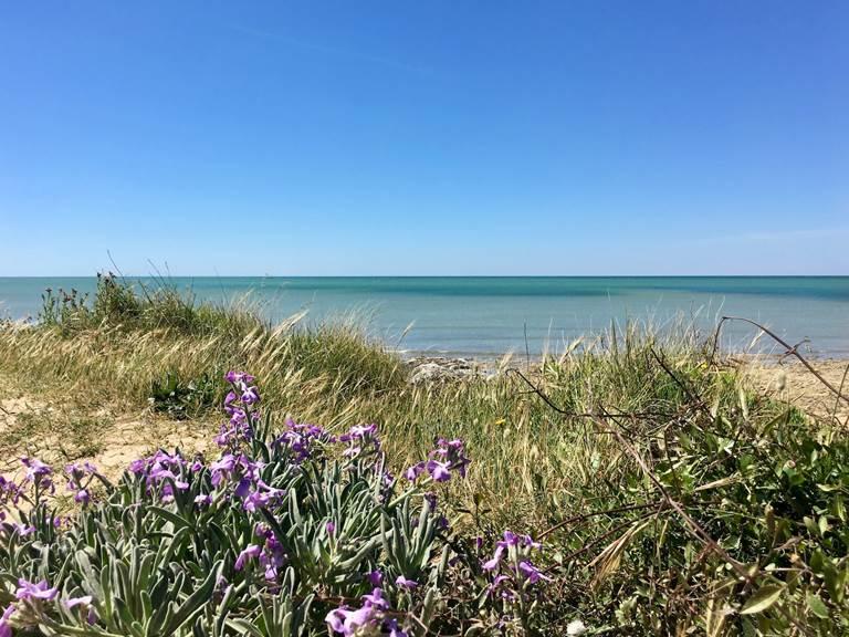 La plage de l'écussière