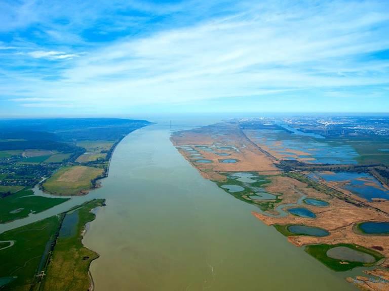 reserve estuaire de seine