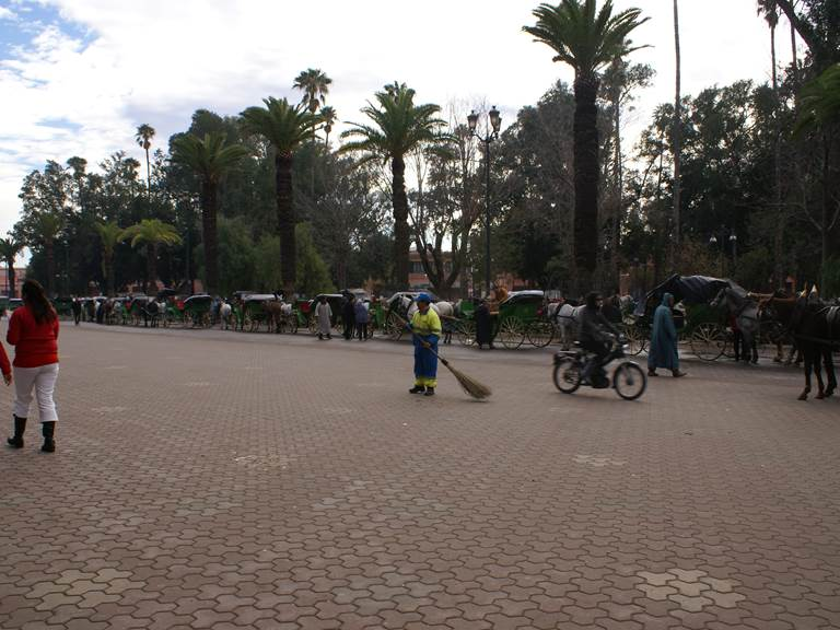 calèche-à -marrakech