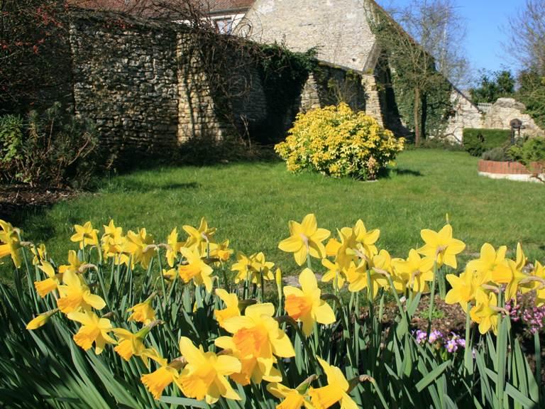 Le jardin au début du printemps