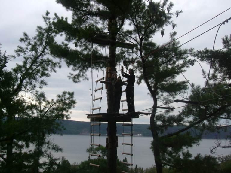 D'arbre en arbre sur le fjord du saguenay