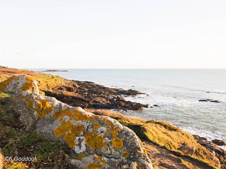 cote-sauvage-moelan-sur-mer