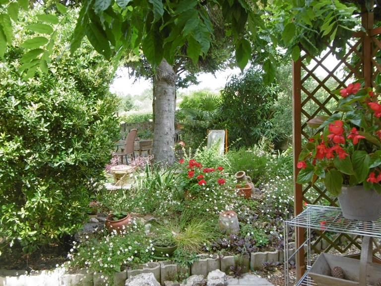 Notre petit jardin