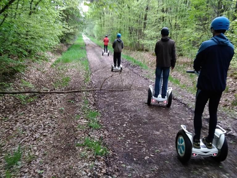 En route, ligne droite , sur chemin forestier. 042019