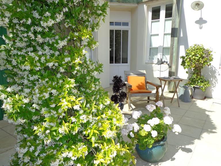 Vue sur le patio fleuri