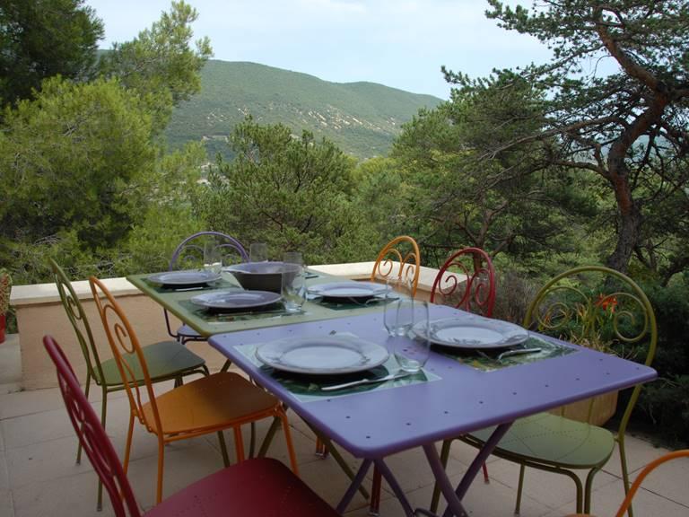 Terrasse avec vue sur pinède et campagne