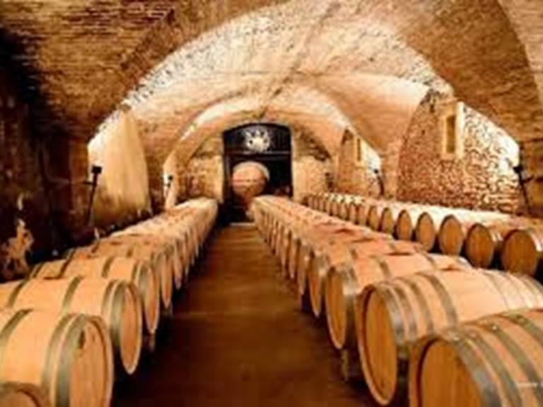 Une des nombreuses caves du vignoble