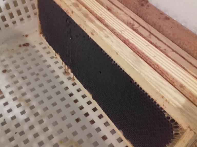 Les cadres de hausse remplis de miel et de miellat