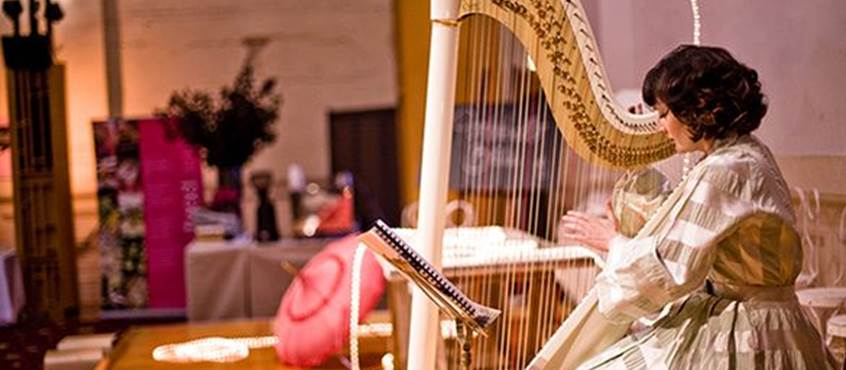 Anna Boulic, harpe et voix, concert intime, jardin, été, haute-vienne, saint-léonard de Noblat