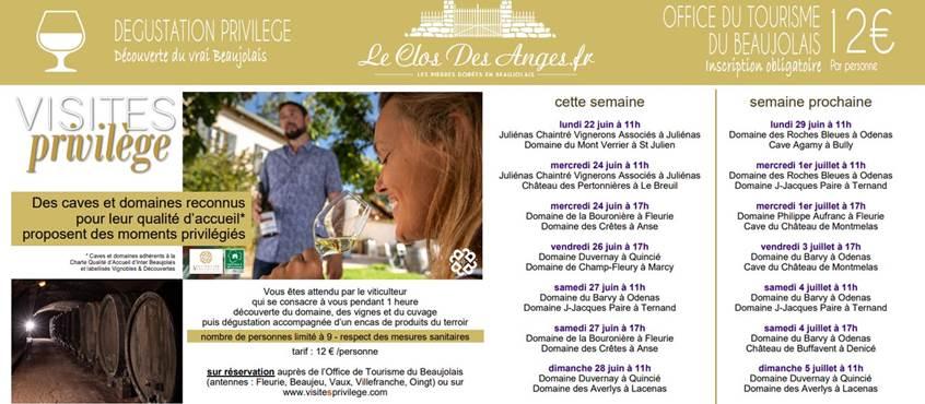 Le Clos Des Anges Degustation en Beaujolais01