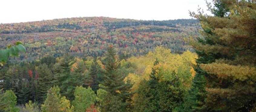 Couleurs d'automne, Domaine le Bostonnais, La Tuque en Mauricie, Canada