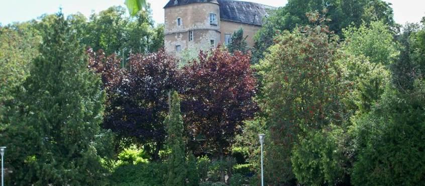 Château de Montargis (15 minutes à pied)