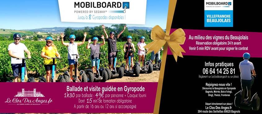 Mobilboard Beaujolais Le Clos Des Anges 2020