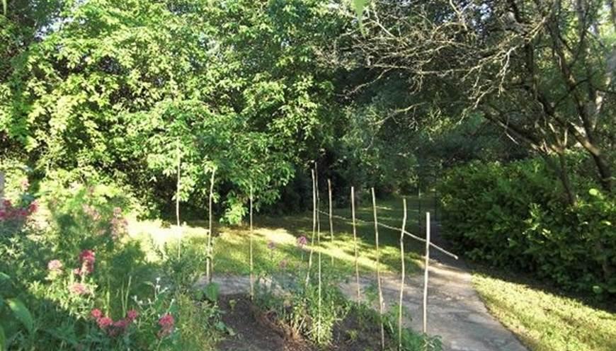 Jardin Gite La Soucarède Grabels