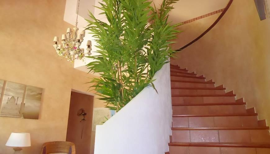 Chambre Massane escalier d'accès