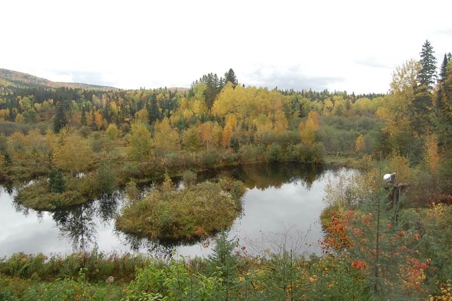 Vue automne Chalet l'observatoire, hébergement La Tuque en Mauricie, Canada