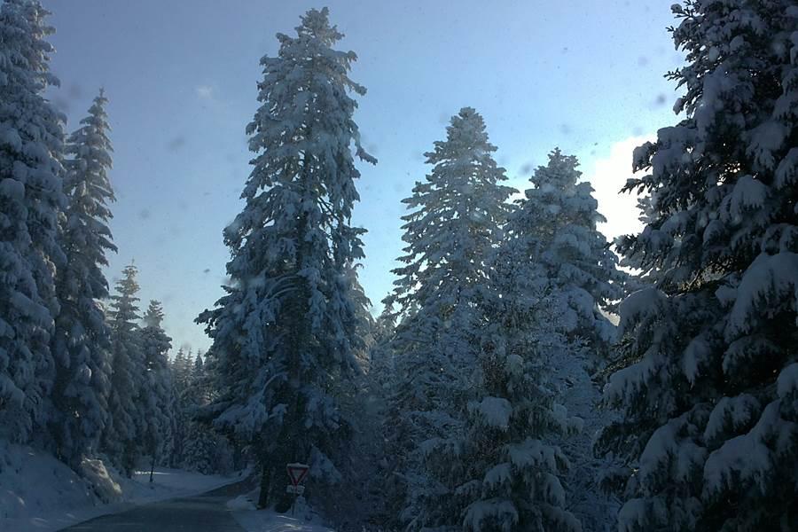 Vers une journée de ski de fond