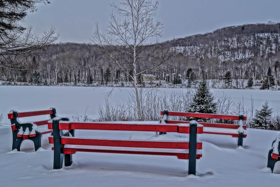 des bancs pour admirer le lac l'été...