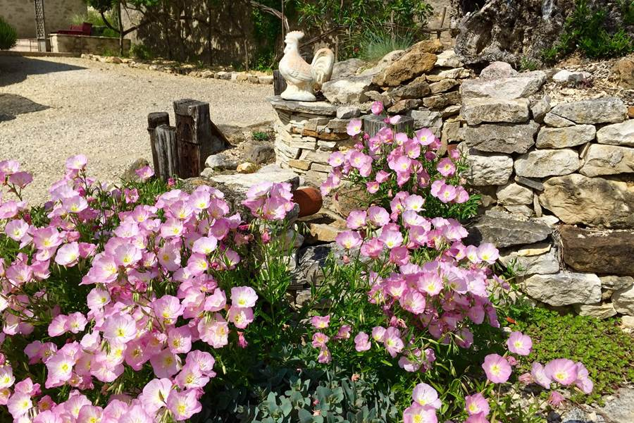 Jardin de Côté Granges