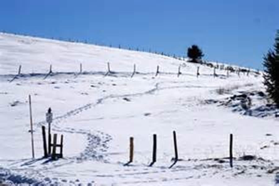 cretes hiver alsace vosges