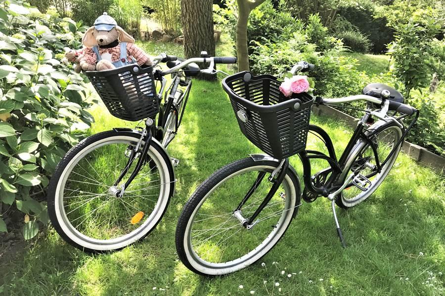 vélo piste cyclable le touquet chambres d'hôtes vent couvert