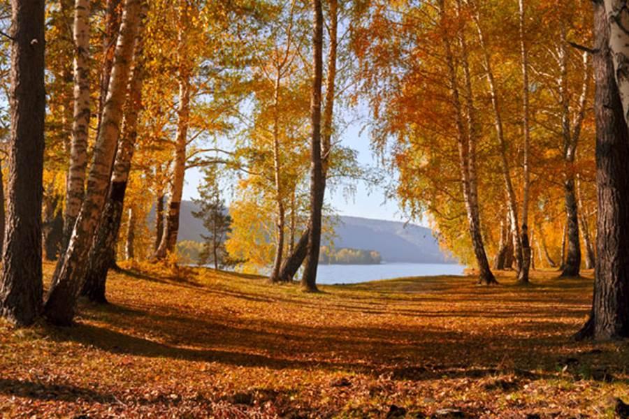 lac de kruth wildenstein automne