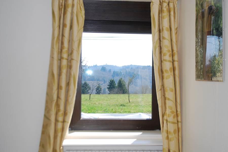 vue depuis la chambre Paul Rebeyrolle Le Ranch des Lacs