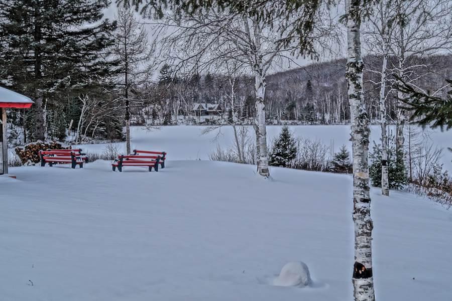 neige vierge