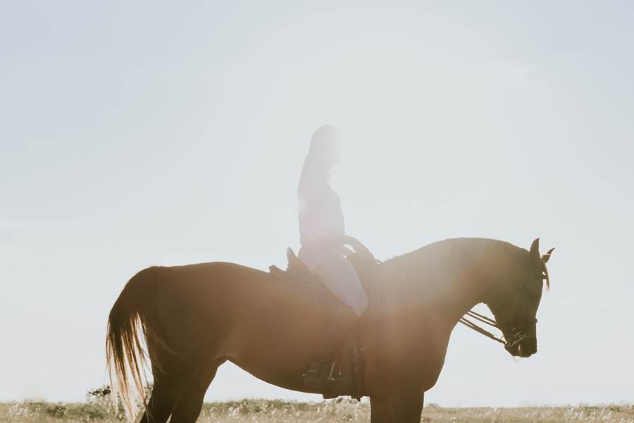 randonnées à cheval Oise Chateau d'Auteuil crédit photo Fernando Puente