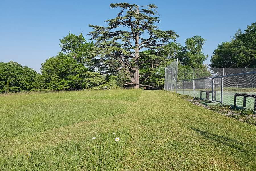 La Loge du Grand Cèdre, gîte de charme avec piscine chauffée et tennis, 17100 Saintes Fontcouverte
