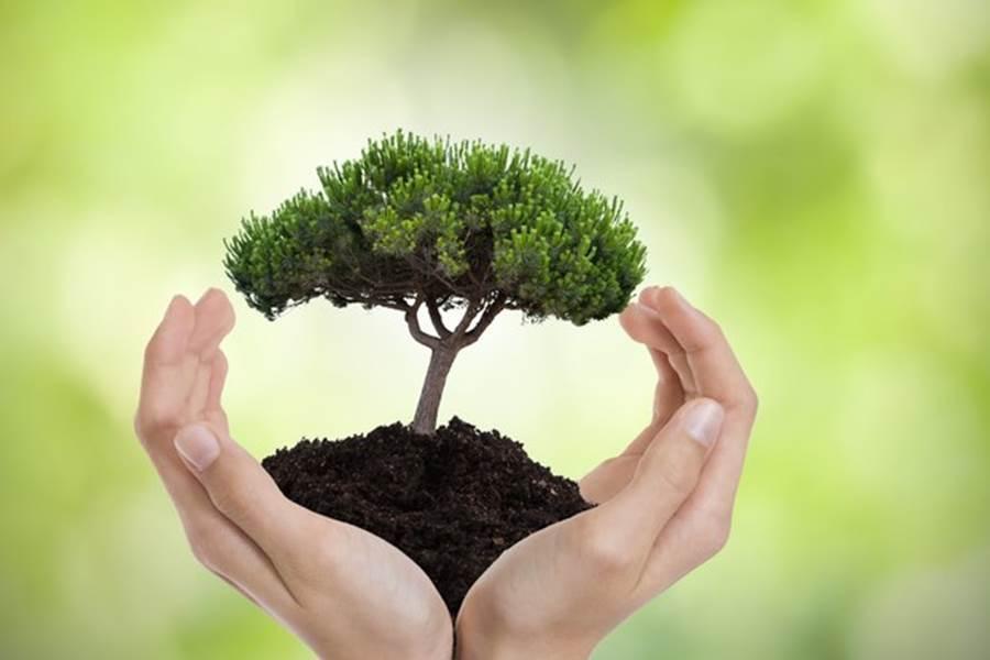 Prenons soin de la planète